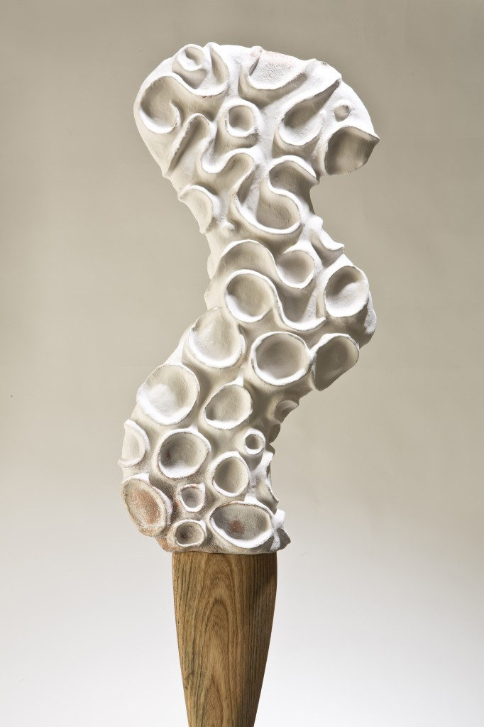 Annette Bellamy_Corals Oar Rowing in Phosphorescence_2013_earthenware with white slip, wood, steel_ Photo by Chris Arend