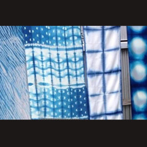 Shibori and Indigo Workshop