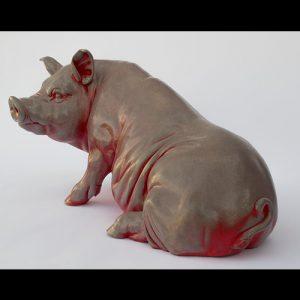 A dark red pig