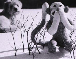 Black and white card with an image of a dog, and sock monkey, in the snow.